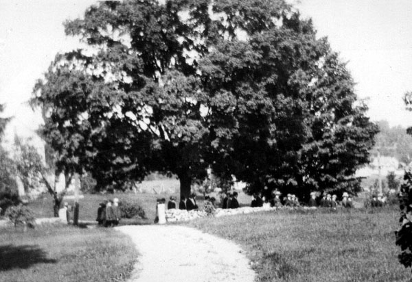 North Driveway into Davis Farm House